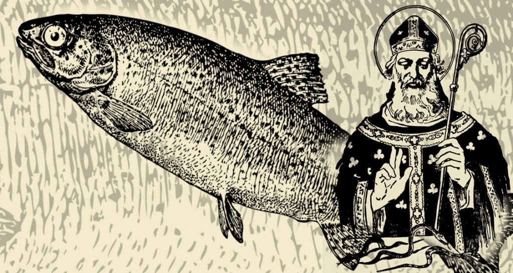 St. Patrick, Boyle and the trout
